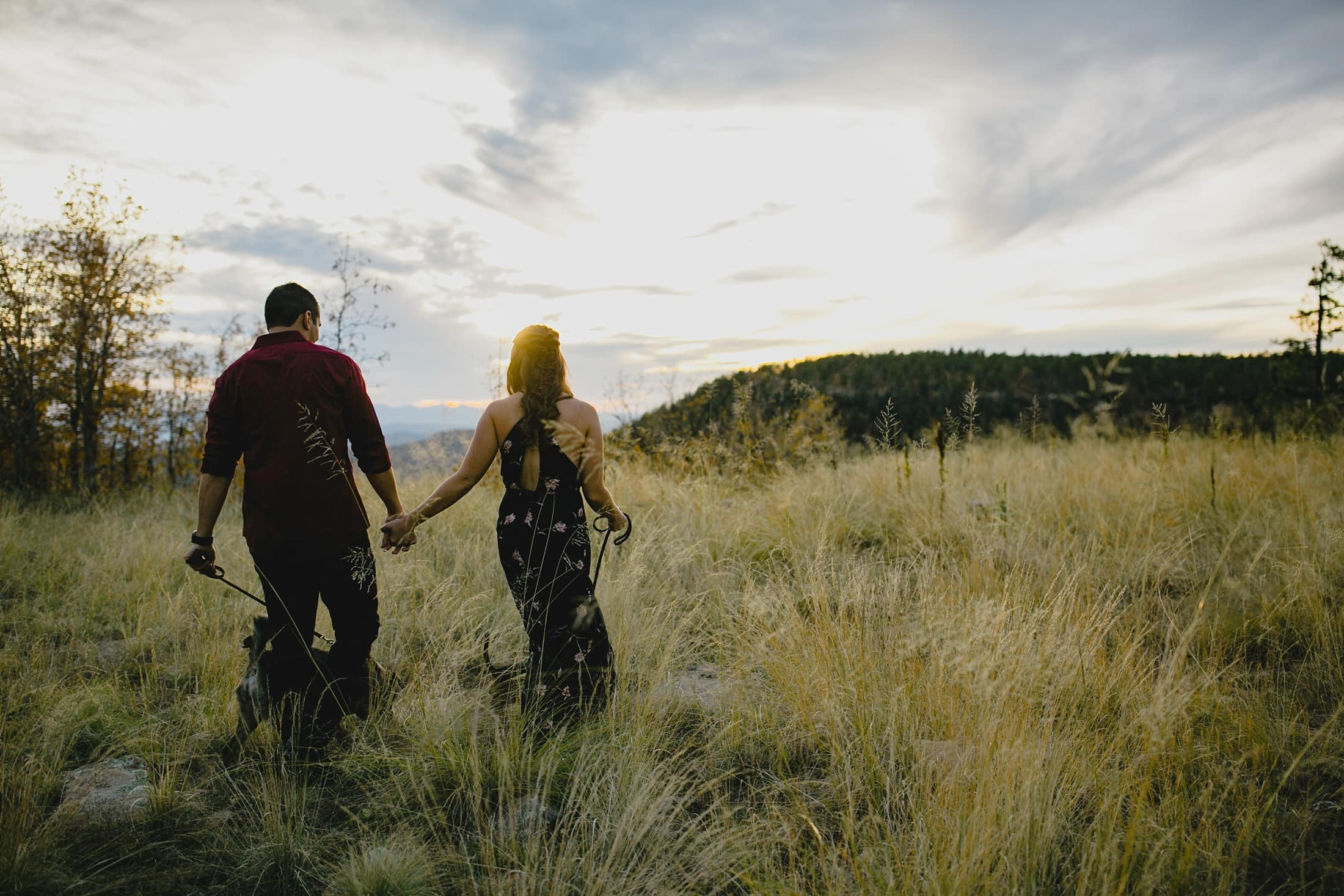 Mogollon Rim engagement photos with dogs in Arizona