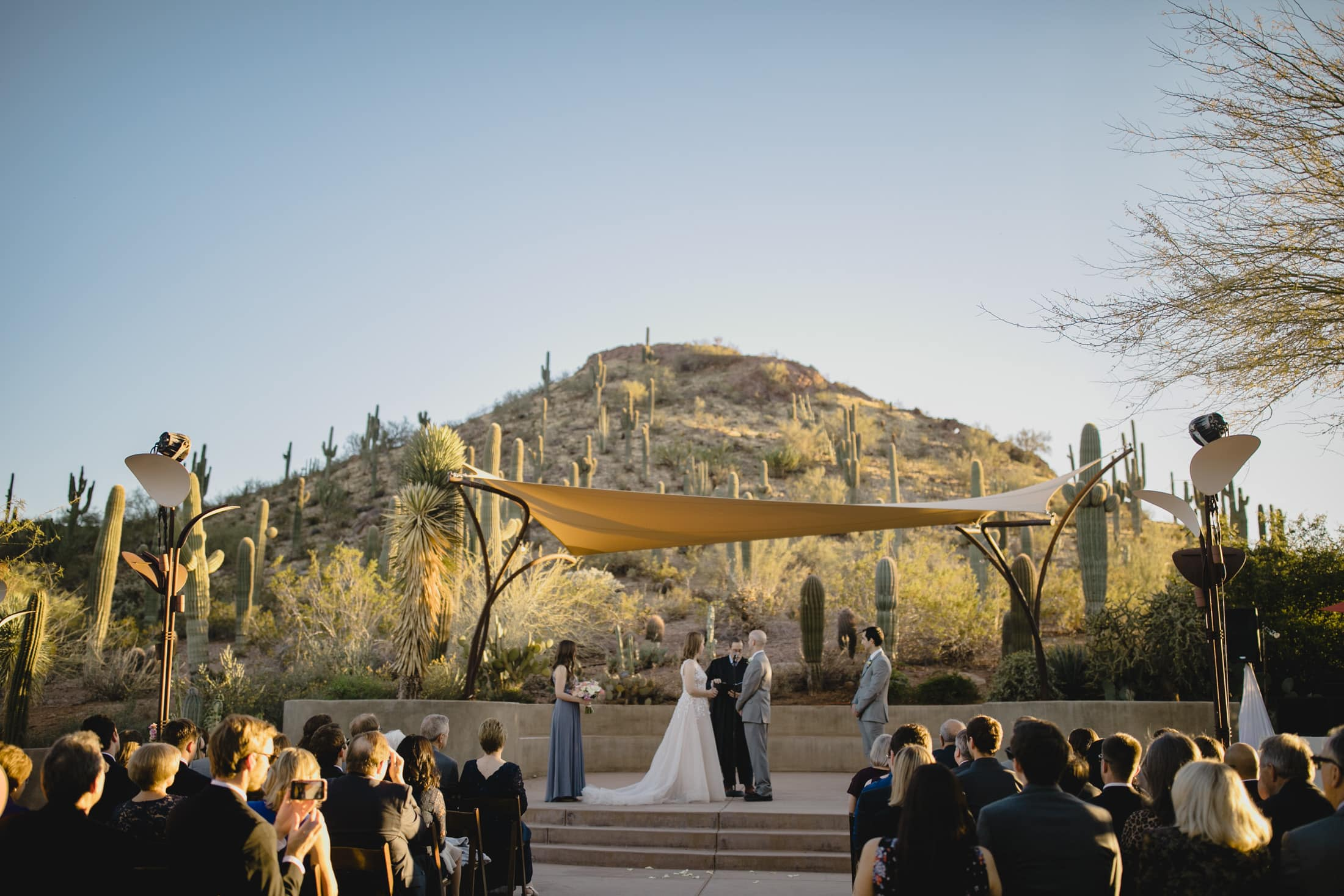 Desert Botanical Gardens wedding ceremony